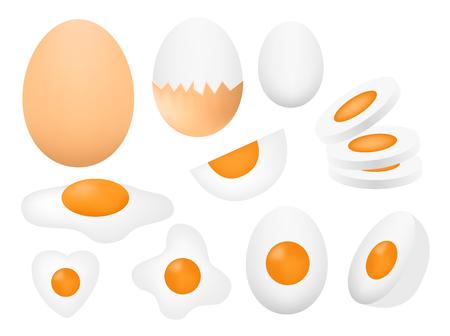boil egg vector Illustration