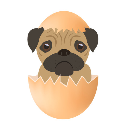 dog egg vector