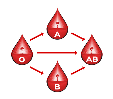 compatibility: Blood group for blood transfusion vector . infographic
