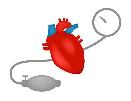 arterial: blood pressure measuring vector Illustration