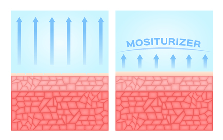 oxidation: dried and moisturizer skin with , before and after , vector