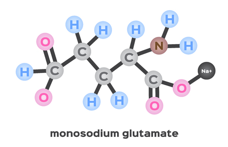 monosodium glutamate structure vector