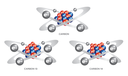 isotope of carbon . 3 steps vector