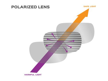reflect: polarized lens reflect harmful light vector