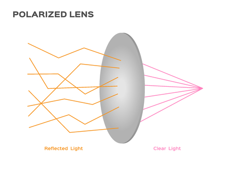 uv: polarized lens reflect harmful light vector