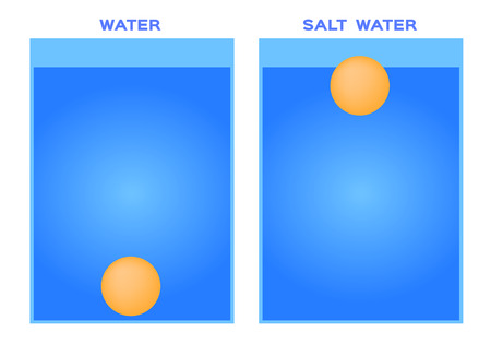 float and drop object in salt water vector