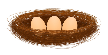 twigs: bird nest with egg vector