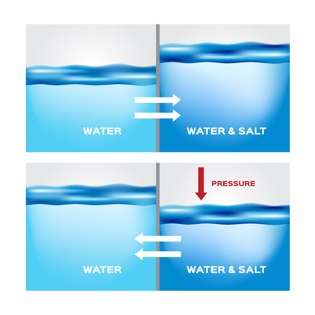 water and aqua osmosis infographic vector Illustration