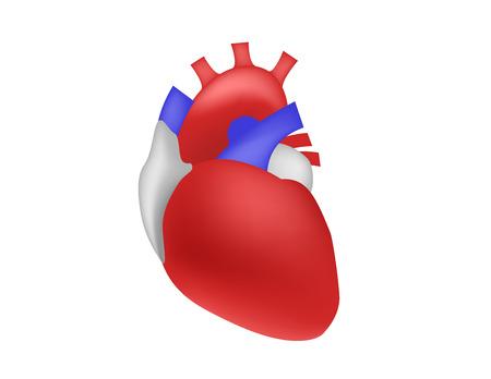 Science concept human heart Illustration