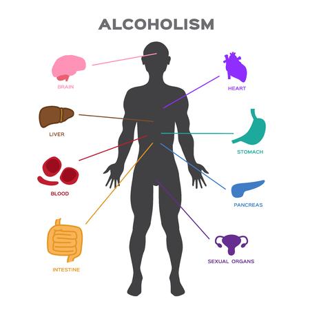 Alcoholism effect to human body . anatomy vector 일러스트