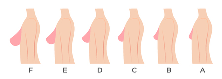 Breast size and type vector Vettoriali