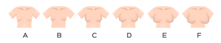 Breast size and type vector Illustration