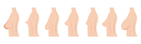 Breast size and type vector Stock Illustratie