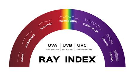 Ray Index Infographik Vektor. radio mikrowelle infrarot sichtbares licht ultraviolette röntgenstrahlen und gamma