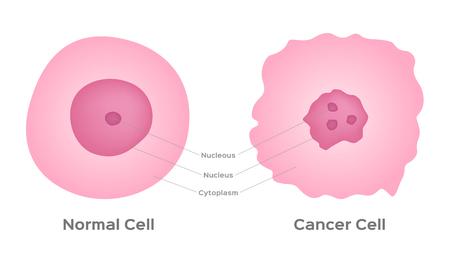 etapa de la célula cancerosa y vector de desarrollo Ilustración de vector