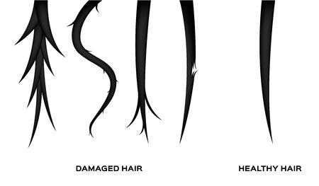 damaged hair and normal hair