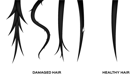 damaged hair and normal hair