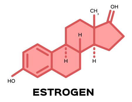 sex hormones , estrogen vector Illustration