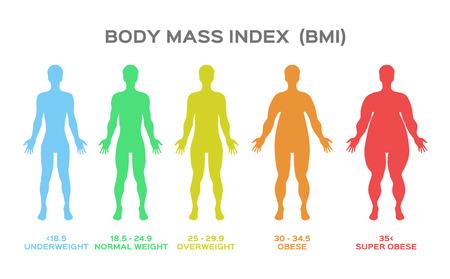 wektor wskaźnika masy ciała Ilustracje wektorowe