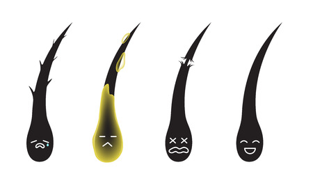 damaged dry oily and healthy hair cartoon vector