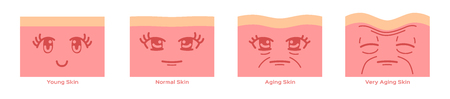 young skin and ageing skin with cartoon face vector Stock Illustratie