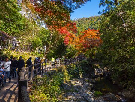 osaka - 25 Nov 2018: Minoh park in autumn with red leaves tree lake osaka, japan