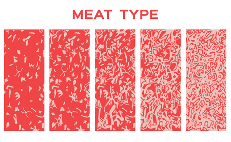 Type de bœuf 5 avec graisse juteuse. prime - Vecteur