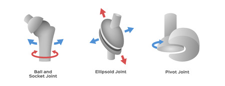 joint type vector Ilustracje wektorowe