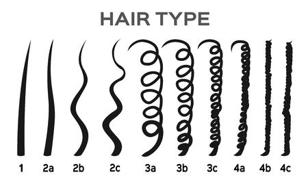 Types de cheveux dessin animé / illustration vectorielle