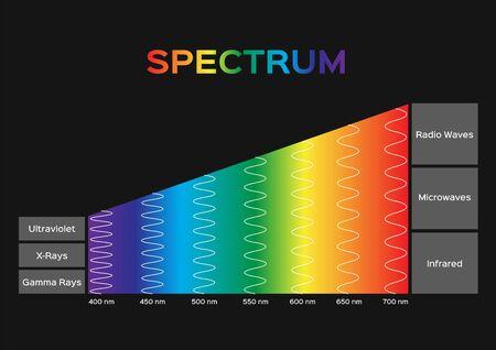 infographic of Visible spectrum color. sunlight color Vektoros illusztráció