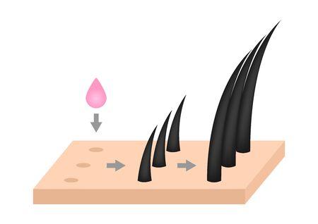 vecteur de sérum de croissance des cheveux Vecteurs