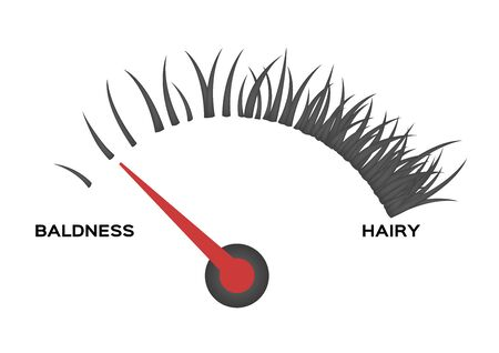 level of bald head meter . no hair vector