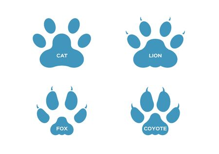 paw and Animals footprints / cat lion fox coyote Illustration
