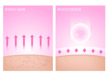 dried skin and skin with moisturizer , before and after / 2 step