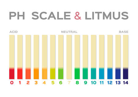 ph scale vector graphic . acid to base / litmus on white