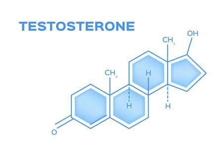 sex hormones , testosterone vector on white Ilustrace