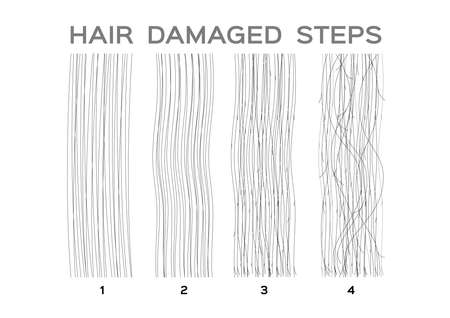 damaged hair steps vector on white background