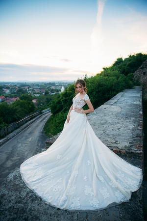 Young Girl In Wedding Dress In Park Posing For Photographer... Stock ...