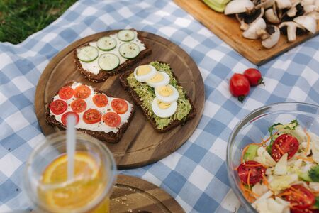 Picnic basket with healthy vegetarian sandwiches on blue checkered blanket in park. Fresh fruits, vegetables and orange juise. Vegetarian picnic concept