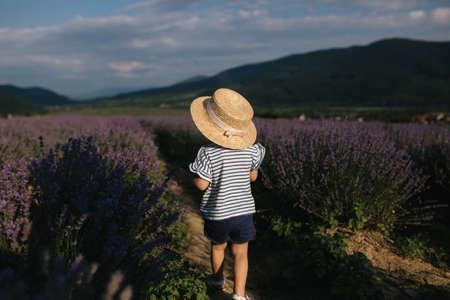 Back view happy little girl in straw hat walking in summer lavender field.