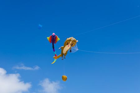 Kite Flying, often seen at kite festival during summer  photo