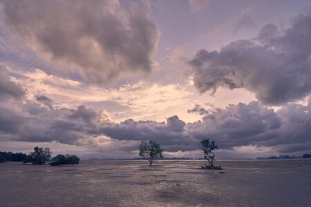 rainy clouds over an open area of low tide. 写真素材