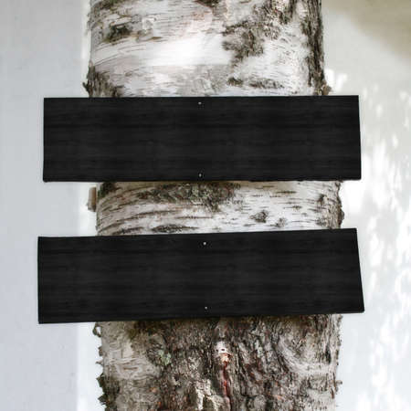 Blank Black Wooden Signs on a Tree Stok Fotoğraf