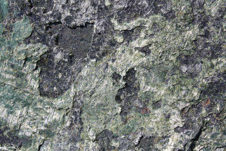 Closeup on a Natural Green and Black Rock Texture