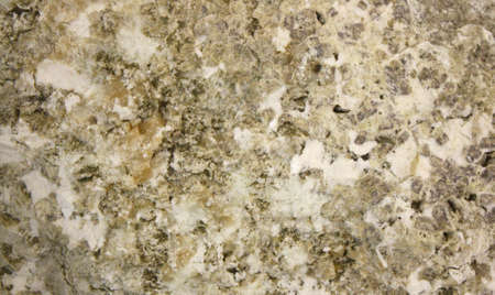Closeup on a Natural Beige Rock Texture