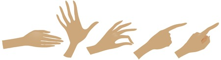 distribute: The vector illustration of hand drawn hands with various gestures. Illustration