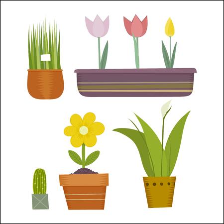potting soil: The vector illustration of potted plants set.
