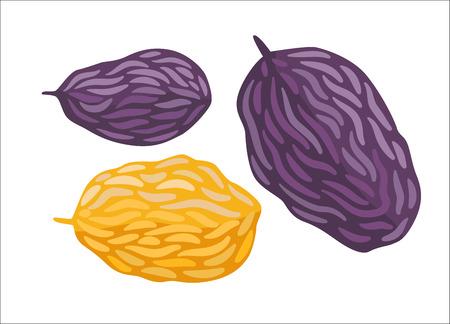 Raisin. Une illustration de vecteur de tas de raisins secs. Une partie de la collection Dodo - une série de cartes éducatives pour les enfants.