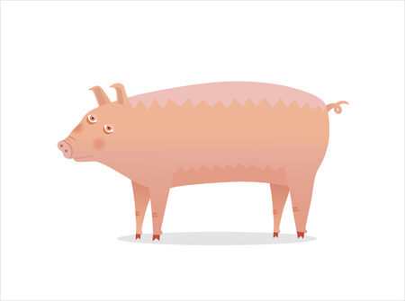 piglet: Pig - vector illustration of a piglet isolated on white background. A part of Dodo collection.