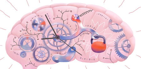 The illustration of a brain representing metaphor of delayed information Stock Photo